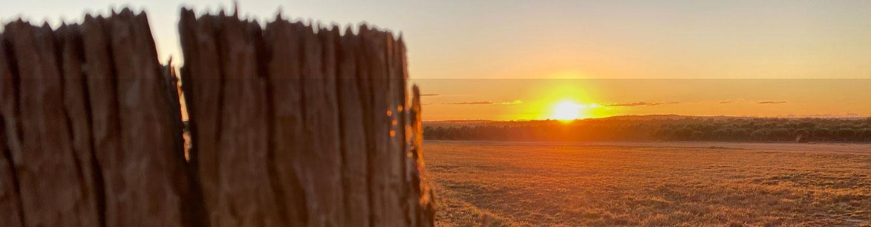 sun in horizon
