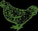 icon chicken