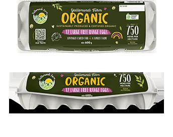 organic eggs in a carton