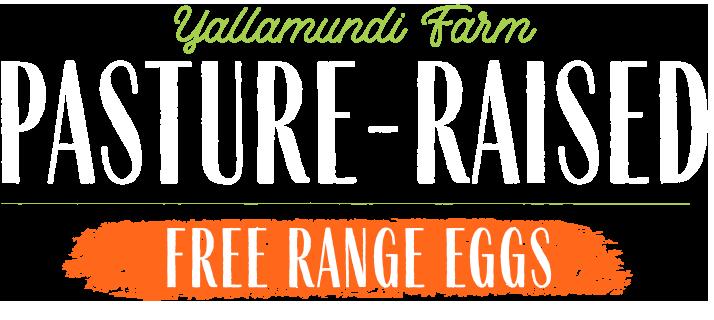 pasture raised free range eggs